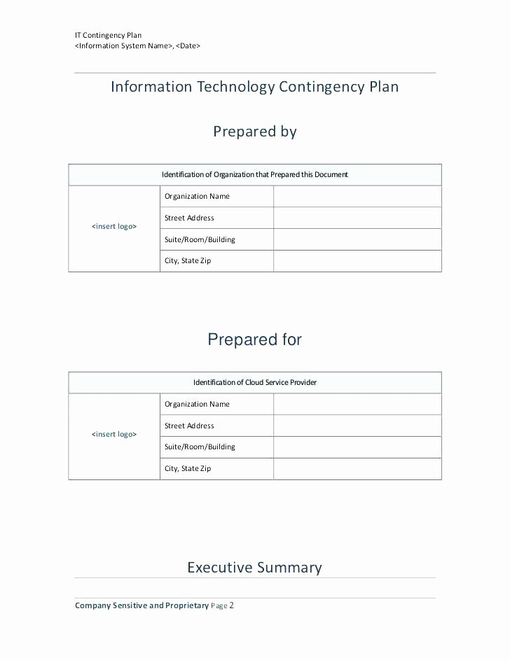 Information Technology Proposal Template Unique Information Technology Business Plan Examples Pdf Free
