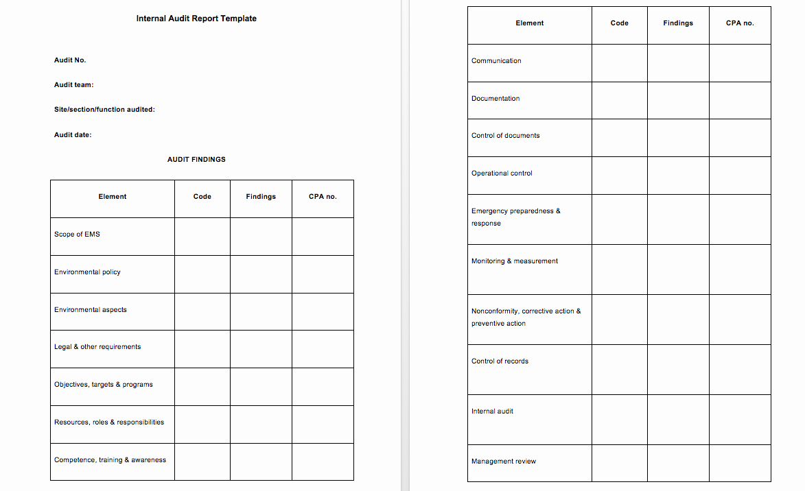 Internal Audit forms Template Beautiful 3 Example Audit Report top form Templates