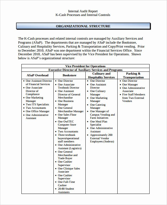 Internal Audit forms Template Beautiful 38 Brilliant Template Samples for Audits Thogati