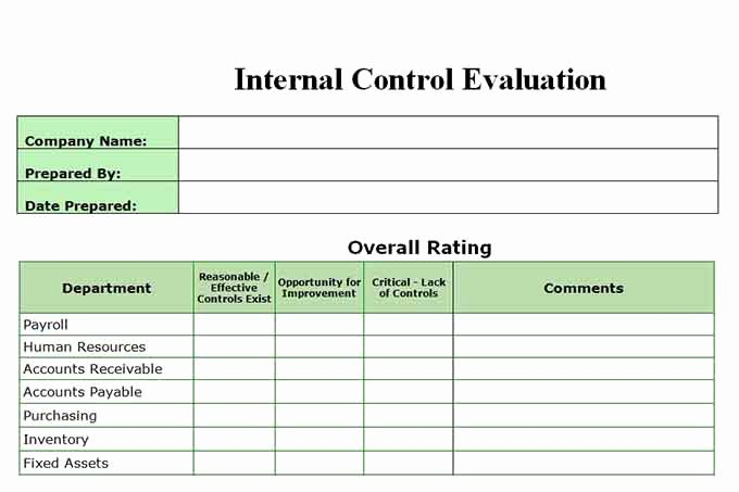 Internal Audit forms Template Fresh Auditor forms Vitalics