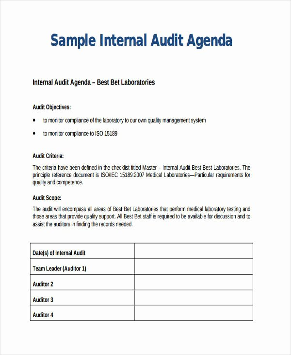 Internal Audit forms Template Lovely 30 Suggested Internal Audit Template with Professional