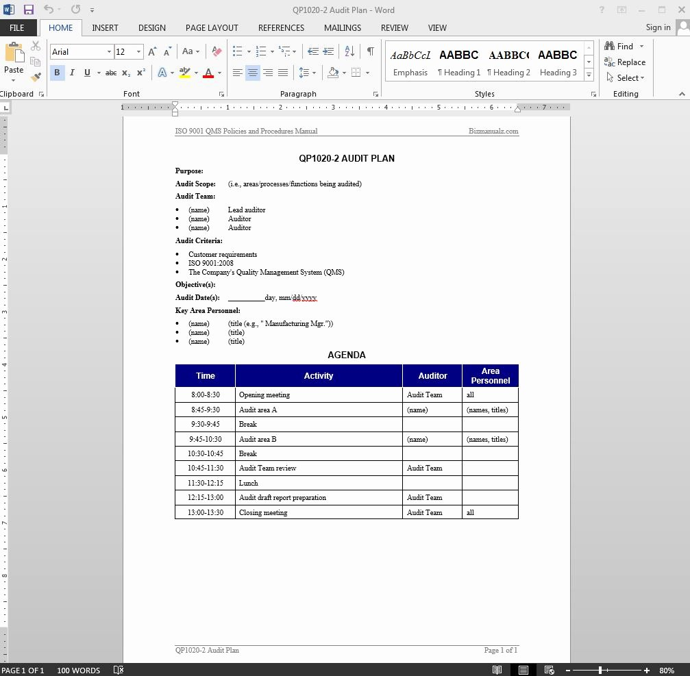 Internal Audit Planning Template Awesome Audit Plan iso Template