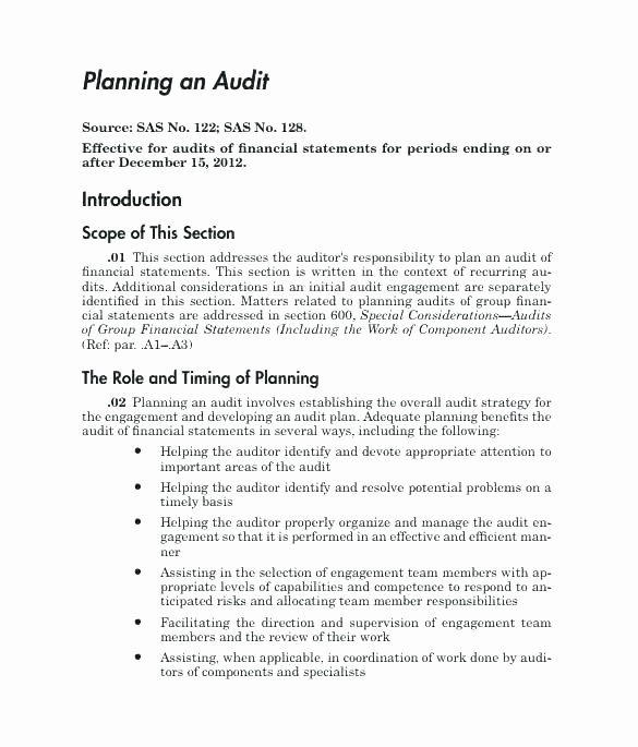 Internal Audit Planning Template Awesome Basic Audit Plan Internal Program Template Quality