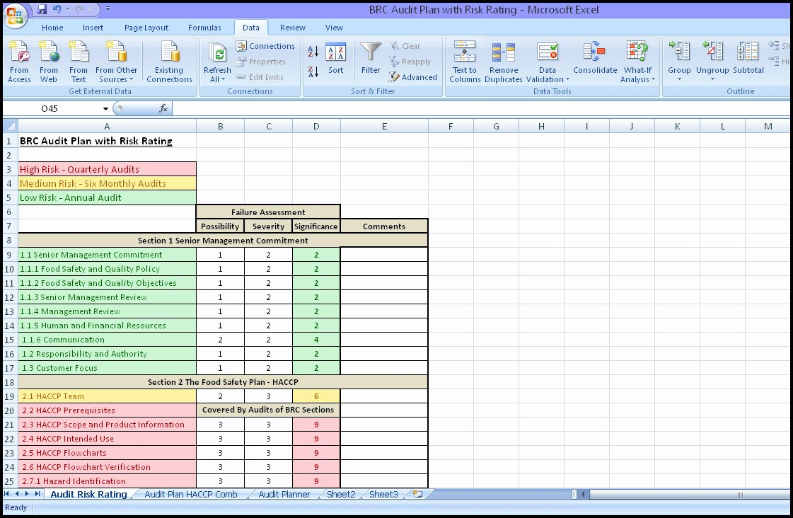 Internal Audit Planning Template Awesome Internal Audit Plan Template Virtren – Plan Bee