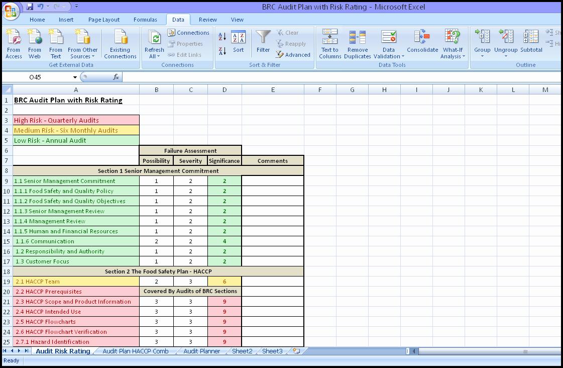 Internal Audit Planning Template Fresh Internal Audit Schedule Template