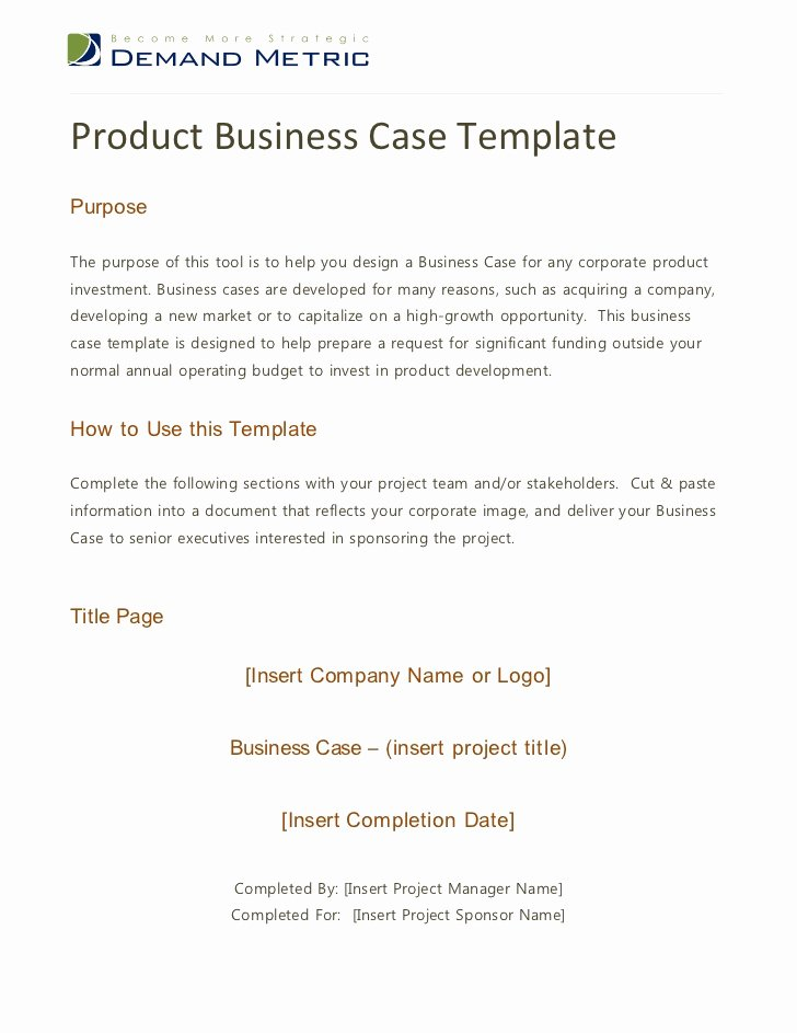 It Business Case Template Lovely Product Business Case Template