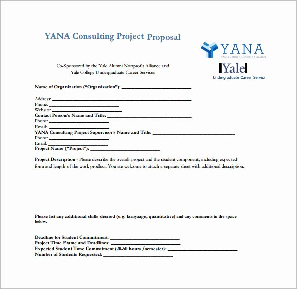 It Consulting Proposal Template Beautiful 16 Consulting Proposal Templates Doc Pdf Excel