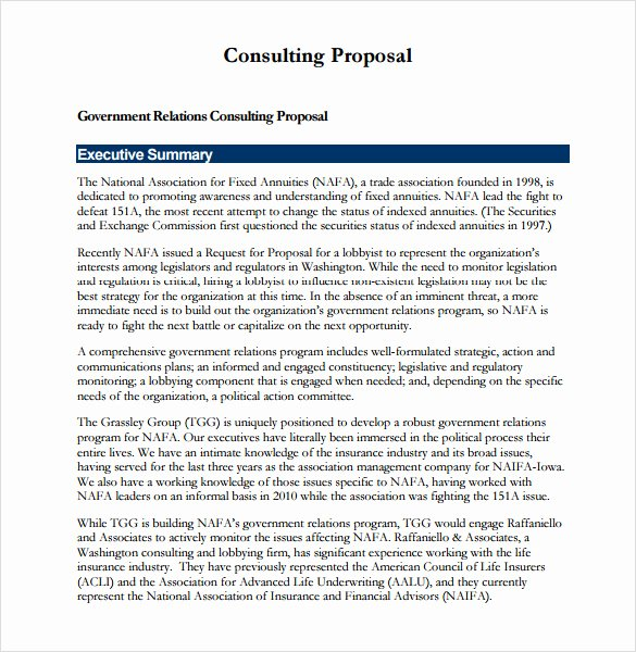It Consulting Proposal Template Fresh Sample Consulting Proposal