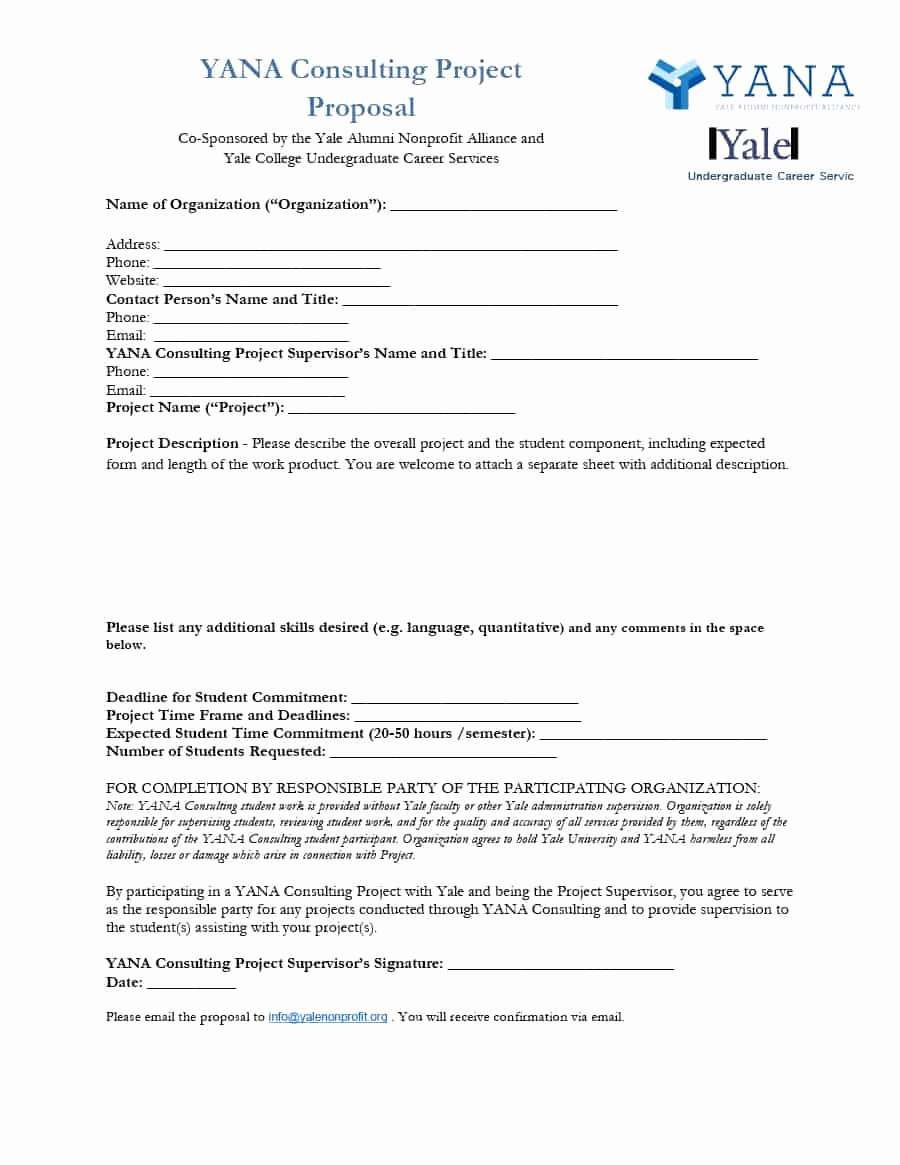 It Consulting Proposal Template Inspirational 39 Best Consulting Proposal Templates [free] Template Lab