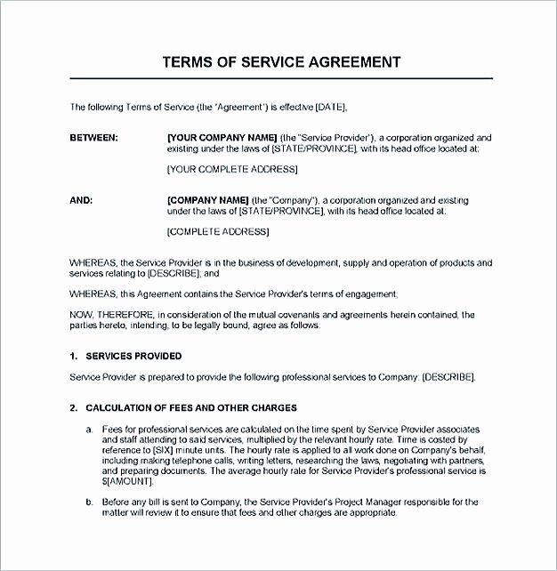 It Service Contract Template Awesome Service Contract Template and Important Terms to Write