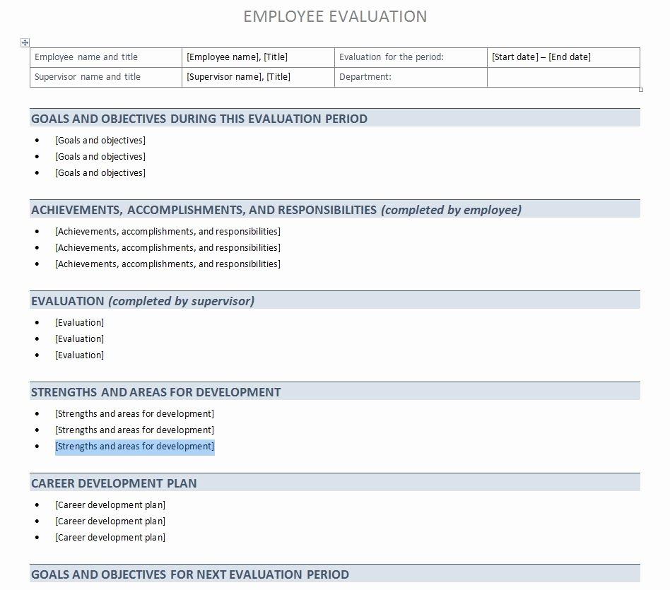 Job Performance Review Template Unique Employee Performance Review Template