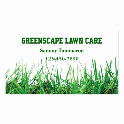 Landscape Business Card Template Beautiful Lawn Care and Landscaping