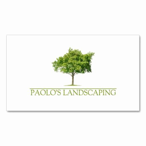 Landscape Business Card Template Best Of 1000 Images About Landscaping Business Cards On Pinterest