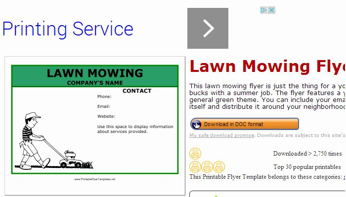Lawn Care Flyer Template Awesome 5 Lawn Mowing Flyer Templates