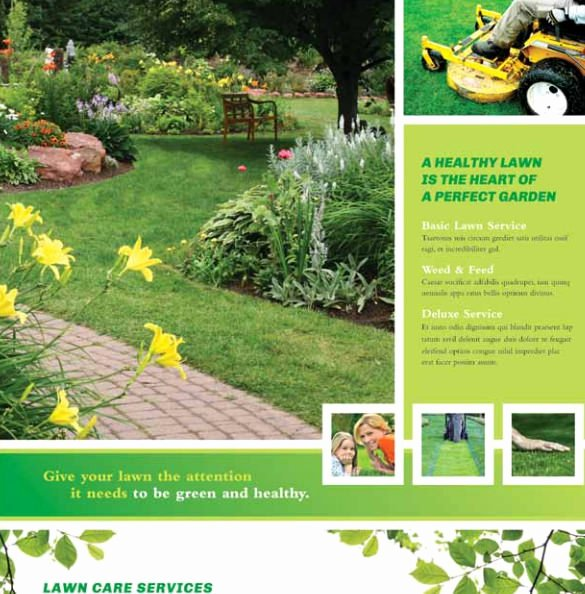 Lawn Care Flyer Template Beautiful Landscape Flyer Templates Yourweek Eeca25e