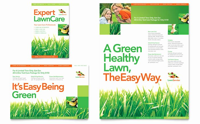Lawn Care Flyer Template Best Of Lawn Maintenance Flyer & Ad Template Design