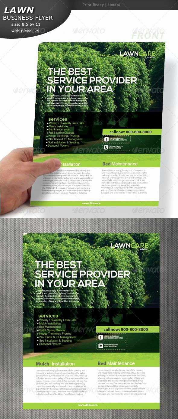 Lawn Mowing Flyer Template Best Of Lawn Care Flyer
