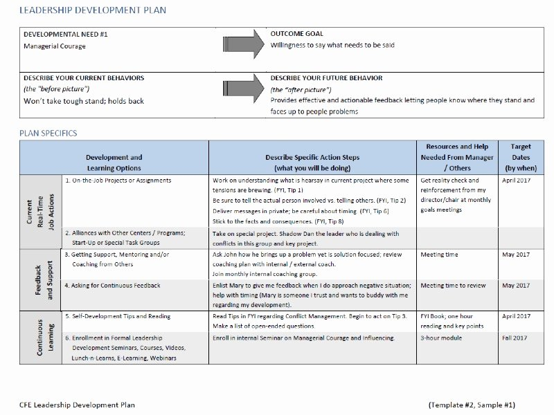 Leadership Development Plan Template Best Of Leadership Development Plan