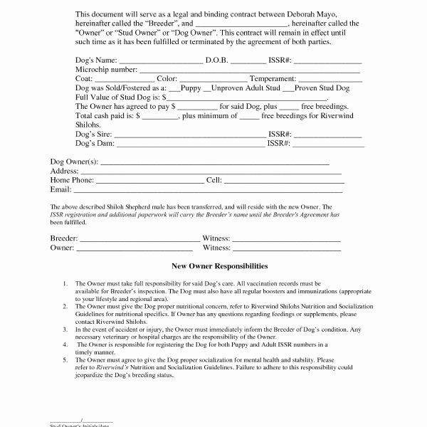 Legal Binding Contract Template Beautiful Binding Agreement Contract Template – Invitation Templates
