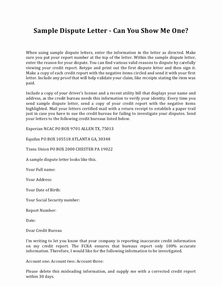 Letter Of Credit Template Best Of Sample Dispute Letter to Credit Bureau Letter Of