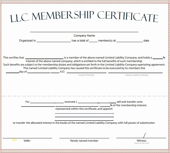 Llc Member Certificate Template Awesome Sample Membership Certificate