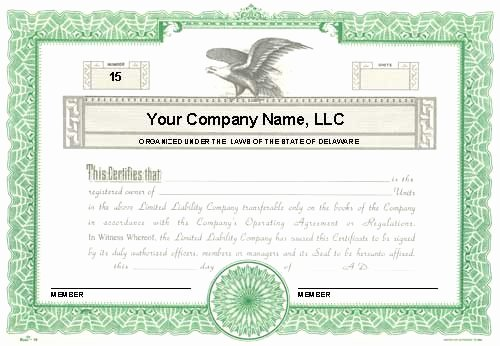 Llc Member Certificate Template Best Of Llc Membership Certificate Template