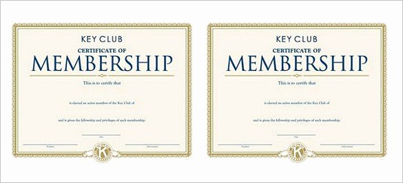Llc Member Certificate Template Best Of Membership Certificate Template