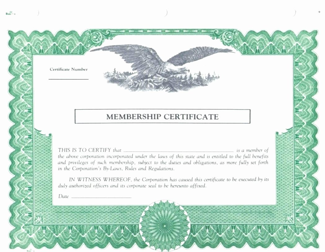Llc Member Certificate Template Best Of Template New Member Certificate Template
