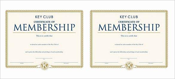 Llc Member Certificate Template Elegant 23 Membership Certificate Templates Word Psd In
