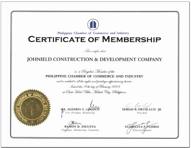 Llc Member Certificate Template New Political Institutions Bong Mendoza S Blog