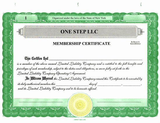 Llc Member Certificate Template Unique Custom Stock Certificates