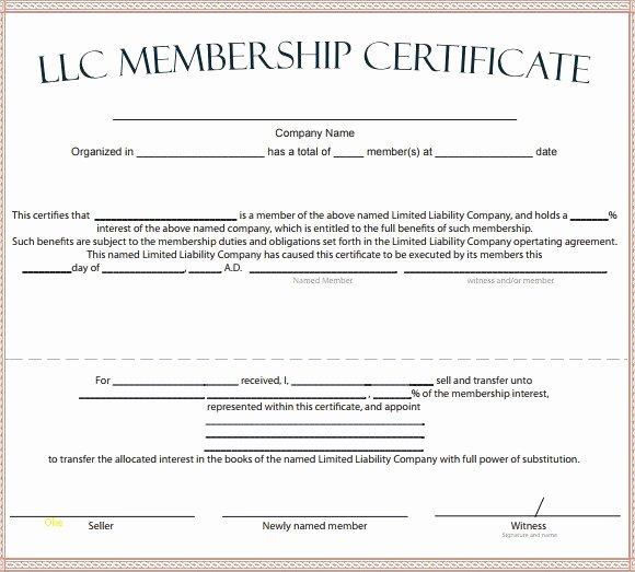 Llc Membership Certificate Template Elegant Sample Membership Certificate