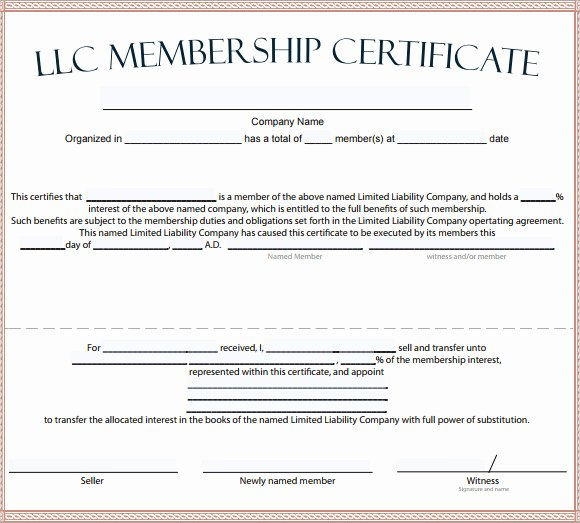 Llc Membership Certificate Template Inspirational 15 Membership Certificate Templates – Free Samples