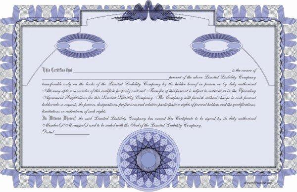 Llc Membership Certificate Template Lovely Llc Member Certificate Template Llc Member Certificate