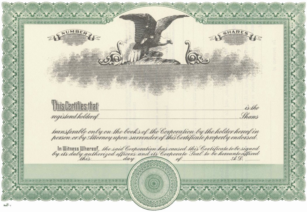 Llc Stock Certificate Template Awesome Blank Certificate Stock