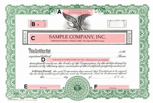 Llc Stock Certificate Template Beautiful Deluxe Corporate Kit Buy Corporate Seals Line