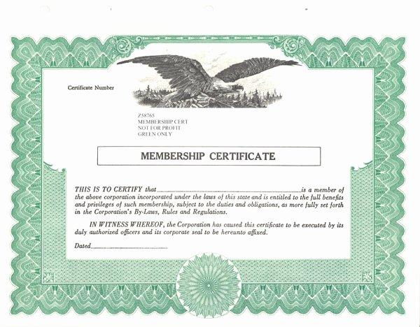 Llc Stock Certificate Template Best Of Standard Stock Certificates Samples