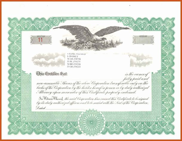 Llc Stock Certificate Template Fresh Blank Stock Certificates Ninja Turtletechrepairs Co