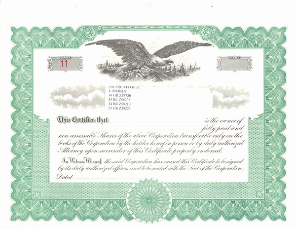 Llc Stock Certificate Template Inspirational Standard Stock Certificates Samples