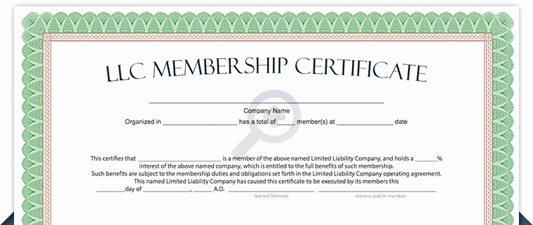 Llc Stock Certificate Template Lovely Llc Membership Certificate Free Limited Liability