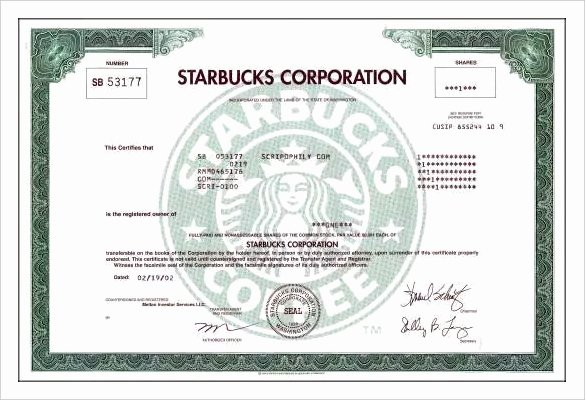 Llc Stock Certificate Template Luxury 23 Stock Certificate Templates Psd Vector Eps