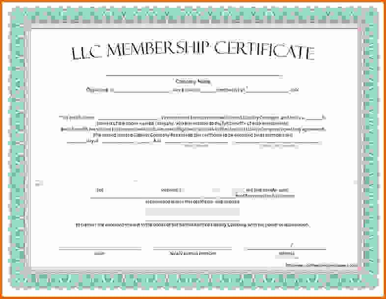 Llc Stock Certificate Template New Llc Membership Certificate Template Free