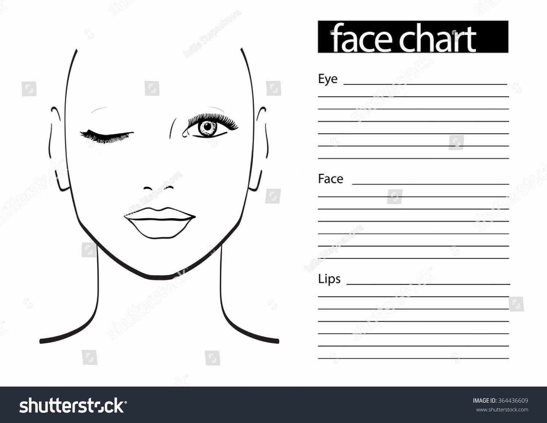 Makeup Artist Website Template Unique Face Chart Makeup Artist Blank Template Stock Vector