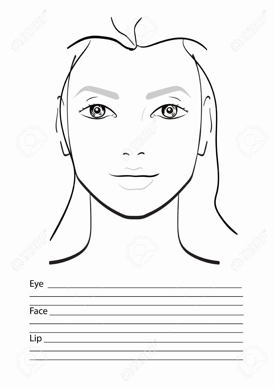 Makeup Artist Website Template Unique Face Chart Makeup Artist Blank Template Vector