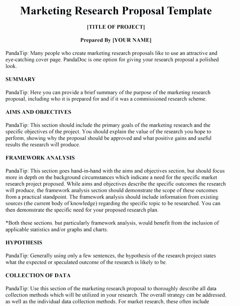 Market Research Proposal Template Lovely Template Marketing Plan Proposal Template Proposals