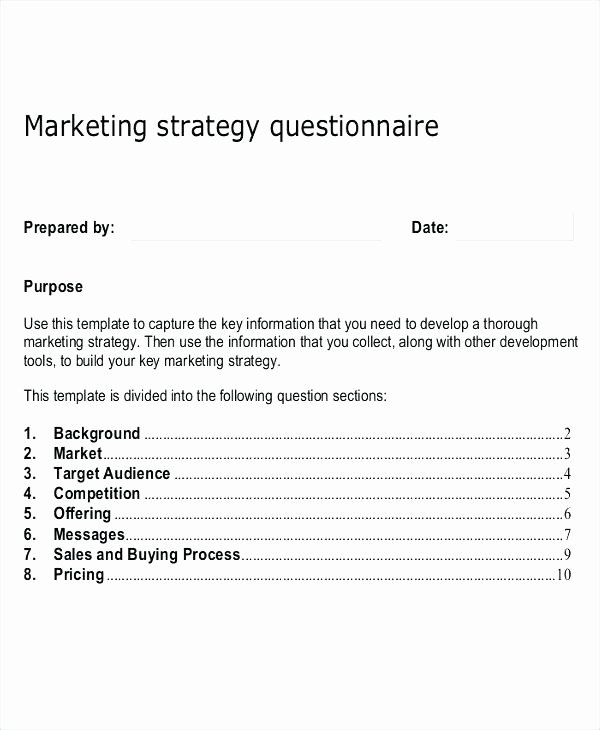 Market Research Survey Template Fresh Market Research Survey Examples 3 Questionnaire Product