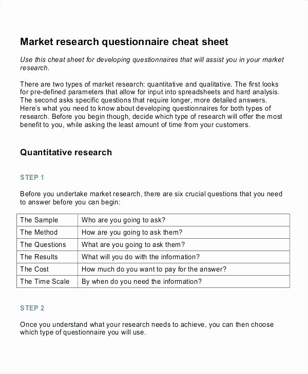 Market Research Survey Template Unique Business Plan Marketing Best International Market