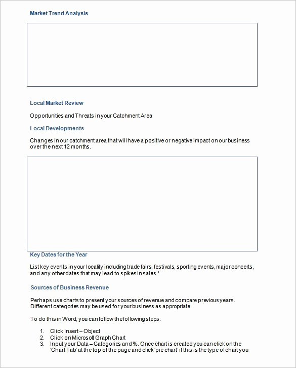 Marketing Action Plan Template Elegant 8 Marketing Action Plan Templates Doc Pdf