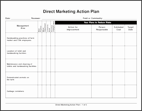 Marketing Action Plan Template Excel New 4 Action Plan Template Excel Sampletemplatess