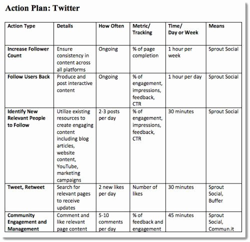 Marketing Action Plan Template Lovely social Media Strategy Template Twitter Action Plan